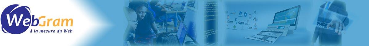 WEBGRAM, Numéro 1 de l'ingénierie logicielle en Afrique, Développement d'applications web et mobiles