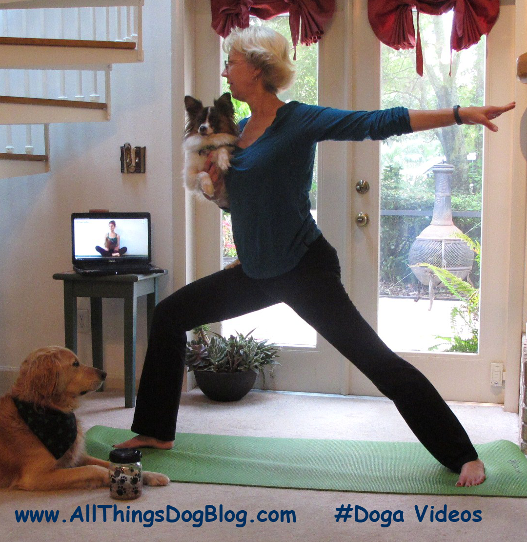 Weekly Wag Bonding Doga