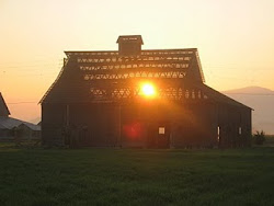 A Heritage Barn, built in 1906
