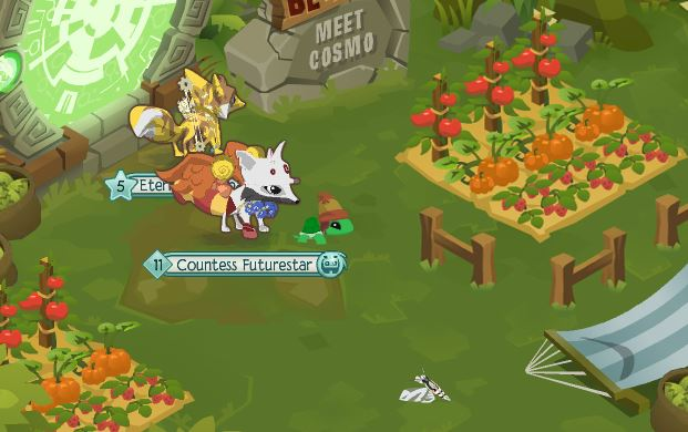 What are the prizes for meet cosmo animal jam