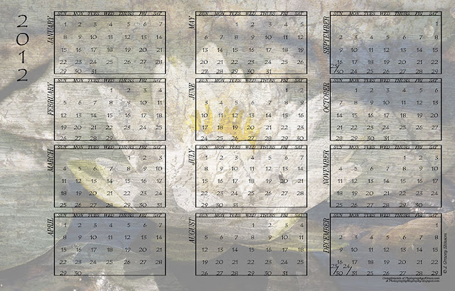 printable 2012 calendar with light waterlily background in jpg format