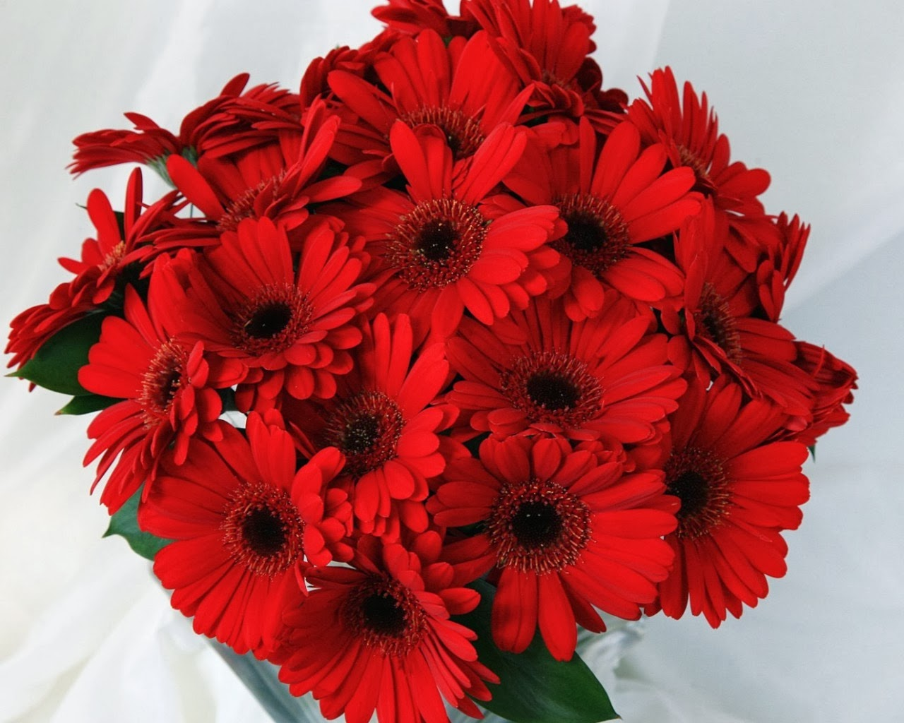 gather flowers wallpapers - photo #15