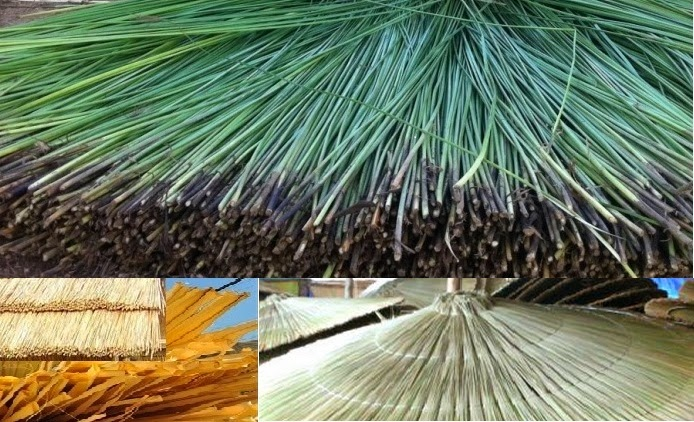 U003d2u0027#African Thatch Thatched Roofing#1.12u0027# African Thatch Reed Panels#100%  Natural Cape Thatching#reed Thatching Tiles#Africa Thatch Reed Umbrella ...