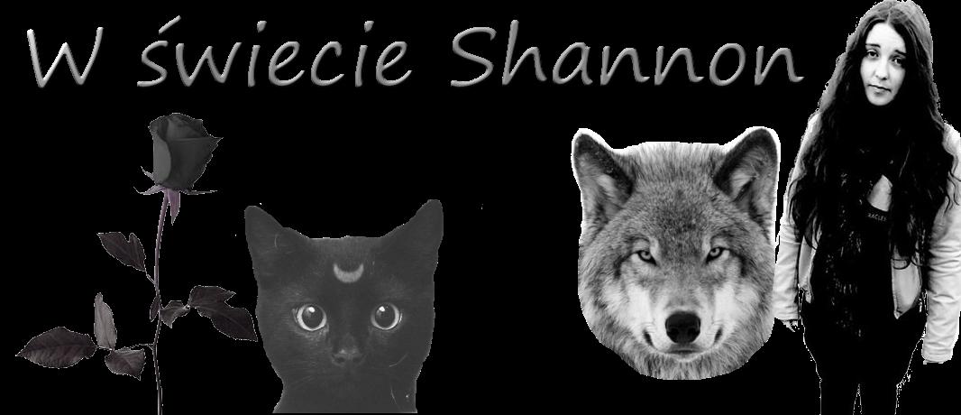 W świecie Shannon