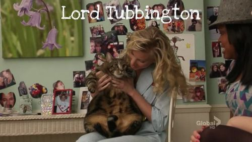 The Best Name Ever For A Pet - Lord Tubbington