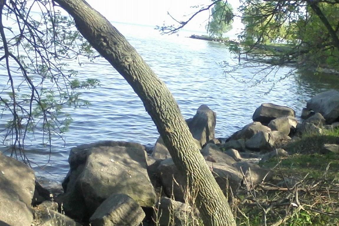 прогноз клева на каховском водохранилище