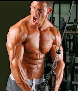 how to get massive biceps and triceps