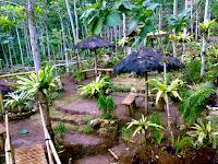 Wisata Alam Taman Sungai Mudal nan Menawan