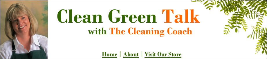Leslie Reichert<br>The Cleaning Coach