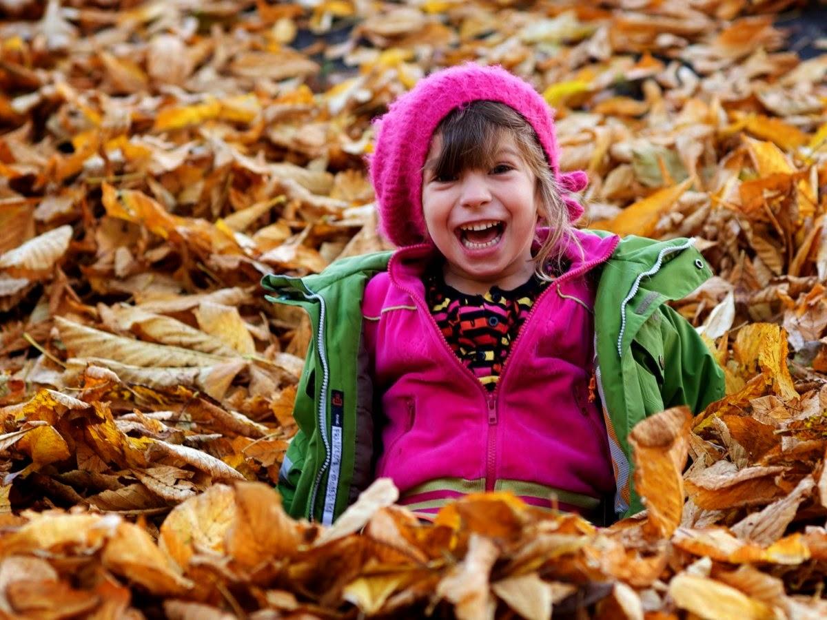 It´s autumn / fall !!
