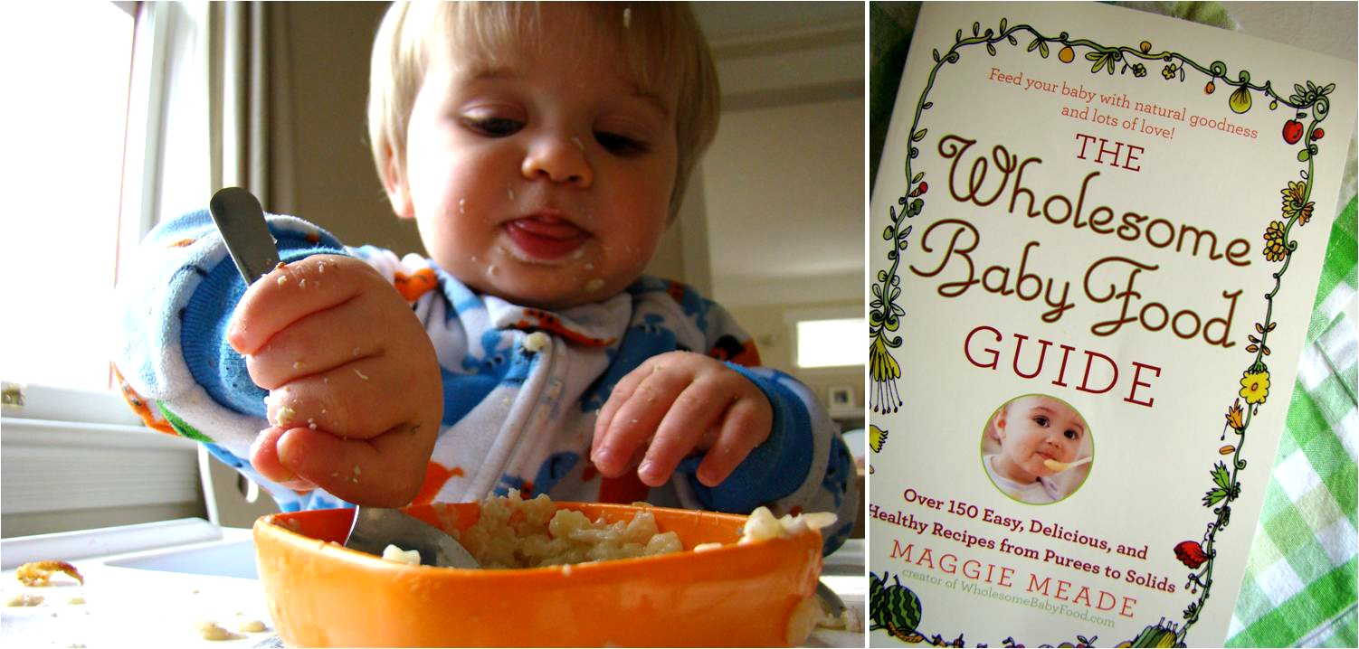 Family feedbag giveaway the wholesome baby food guide to enter to win a copy of this fabulous new book from grand central publishing leave a comment on this blog post with your name and an e mail address you forumfinder Images