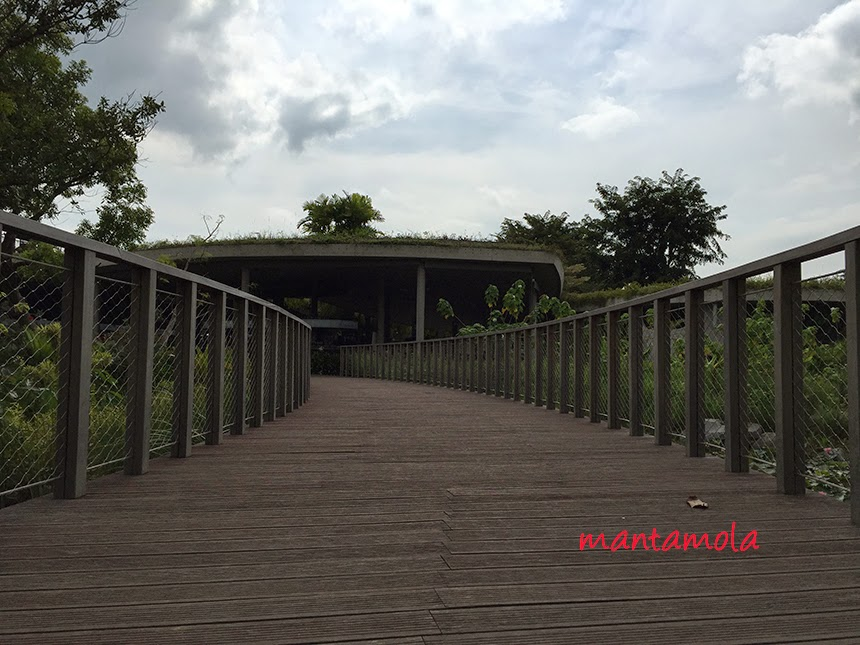 Satay by the bay wooden bridge
