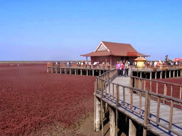 Praia Vermelha de Panjin