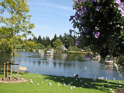 De Gondoletta bootjes is omgeven door mooie bomen, planten en bloemen