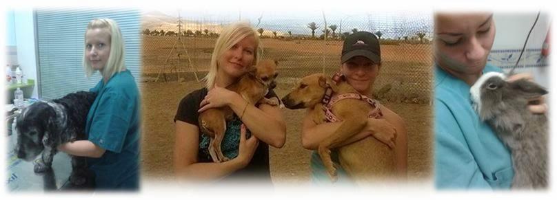 Eläintenhoitajat Fuerteventuralla