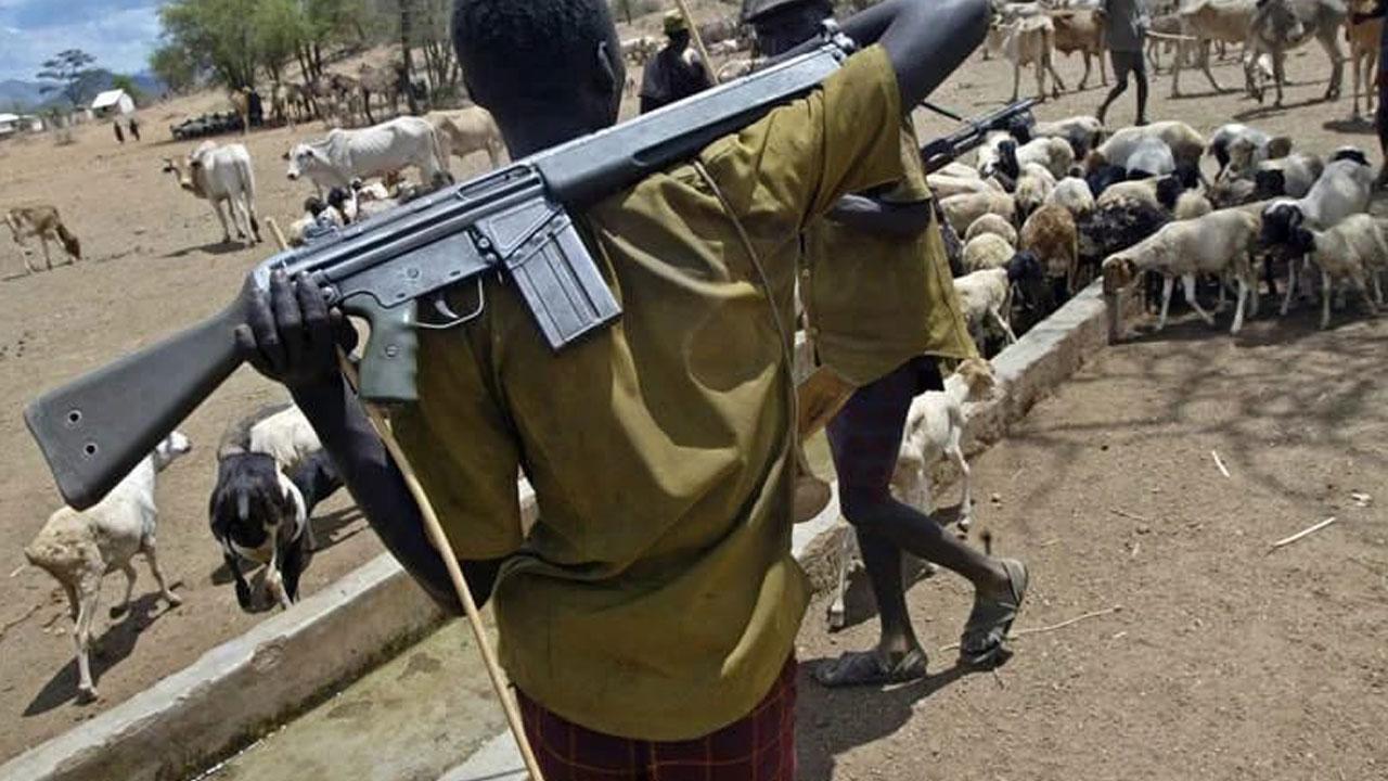 Delta female farmer kills Fulani herdsmen