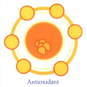 Crystal X Berperan Sebagai Antioksidan
