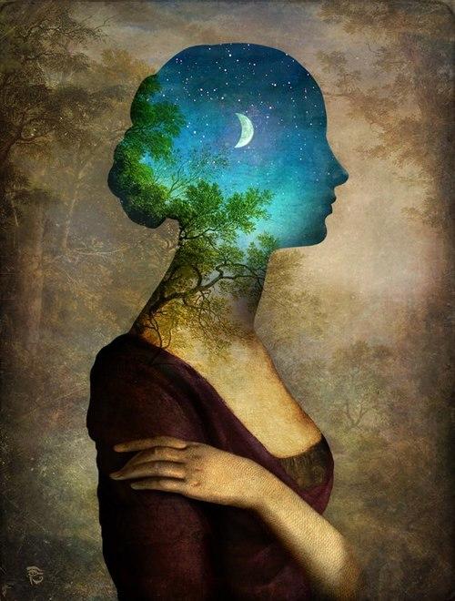 Stellar head
