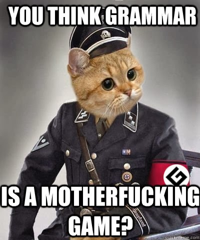 [Image: Grammar-Cat-Meme-Plays-No-Games.jpg]