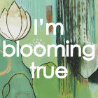 Bloom True e-course