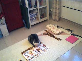 Ompeluhuoneen (eli makuuhuoneen) lattia siivottuna
