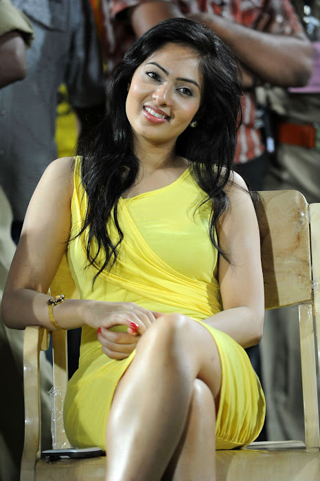 nikesha patel spicy latest photos