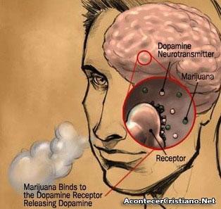Marihuana y resfriado La Marihuana