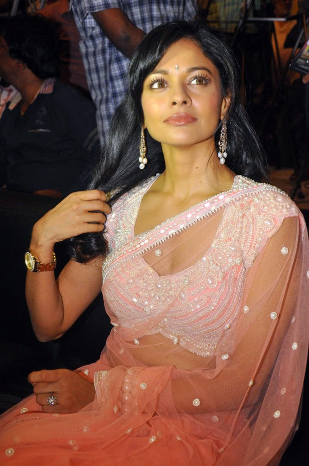 Pooja Kumar in Transparent Saree