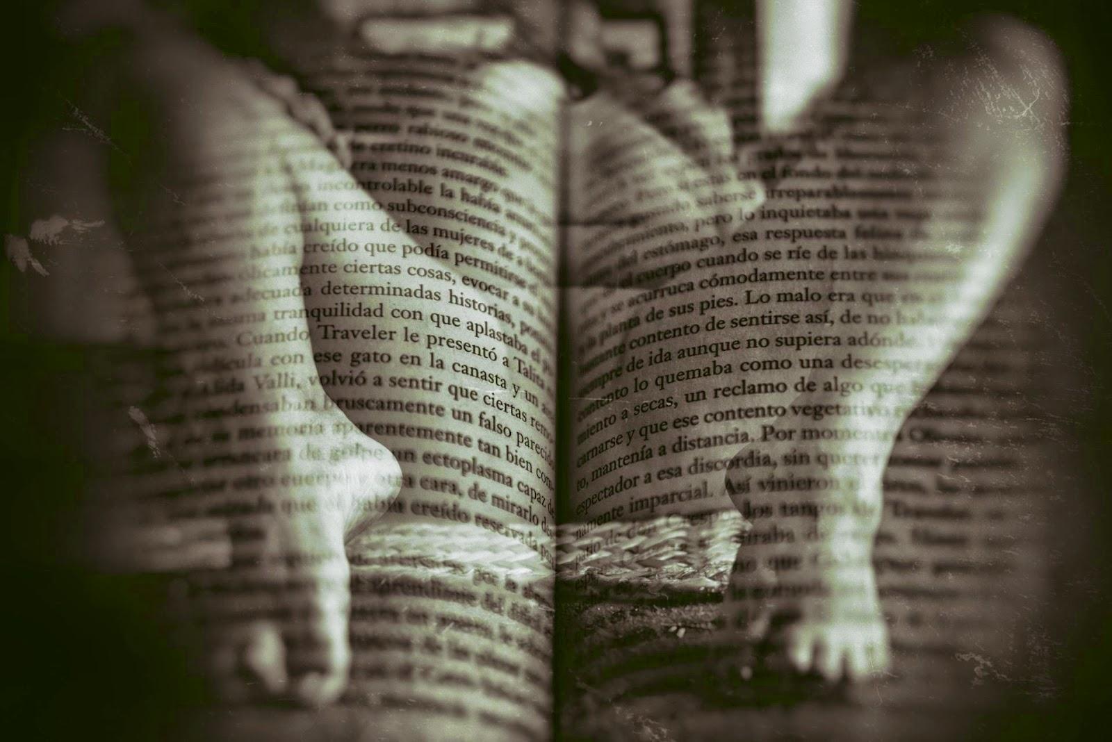 https://elbicnaranja.wordpress.com/2014/12/26/viernes-creativo-escribe-una-historia-84/comment-page-1/#comment-3358