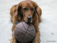 I Play Basketball
