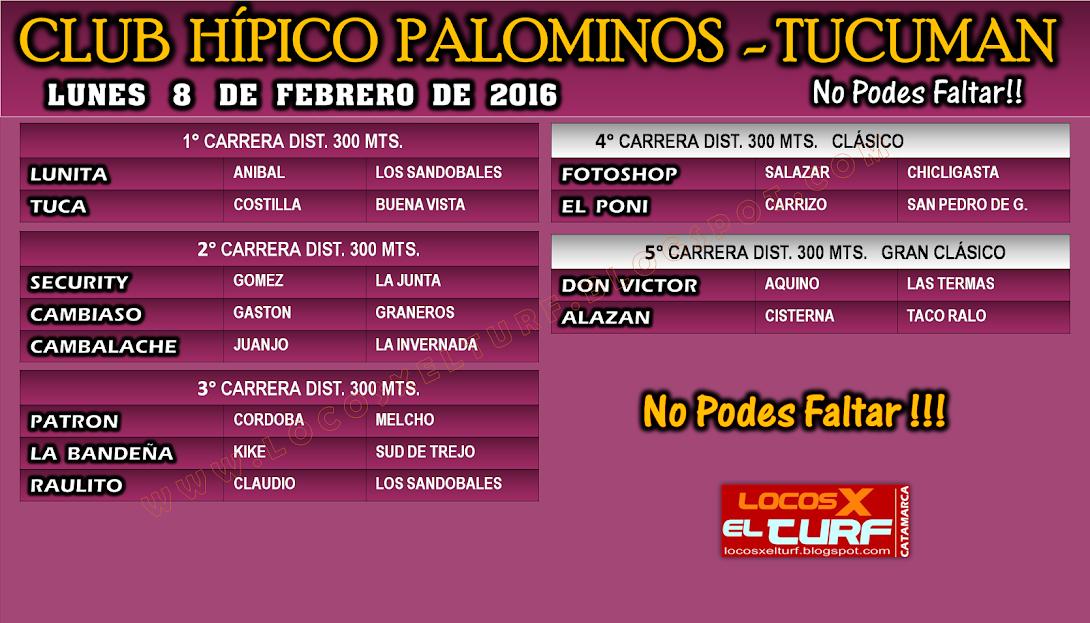08-02-16-HIP. PALOMINOS-PROG.