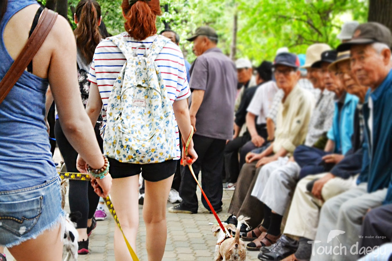 People were paying attention the dogs & the volunteers parade in Duryu Park