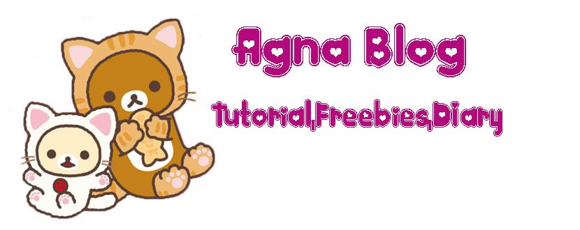 Agna Blog