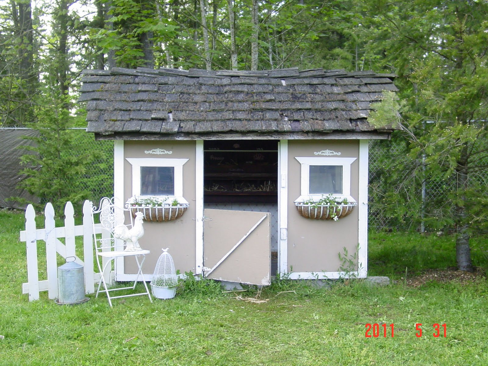 Denny yam fancy chicken coop pictures guide for Fancy chicken coops
