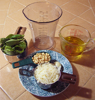 Basil, Pine Nuts, Garlic, Parmesan, Olive Oil near Immersion Blender Container