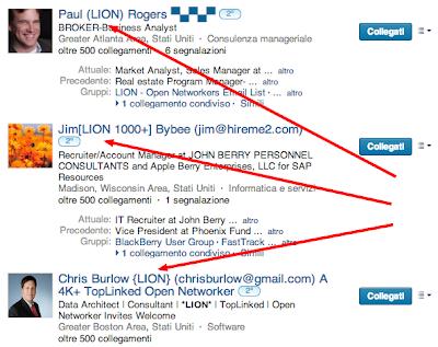 Cosa significa (LION) nel profilo Linkedin?