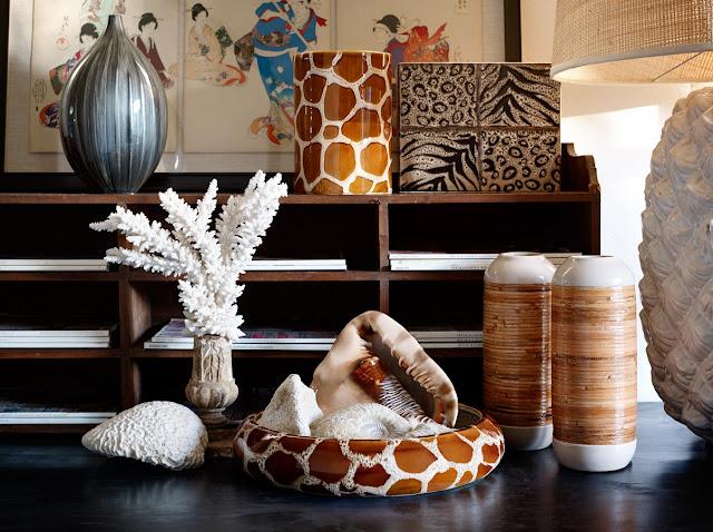 bodegón de conchas y corales