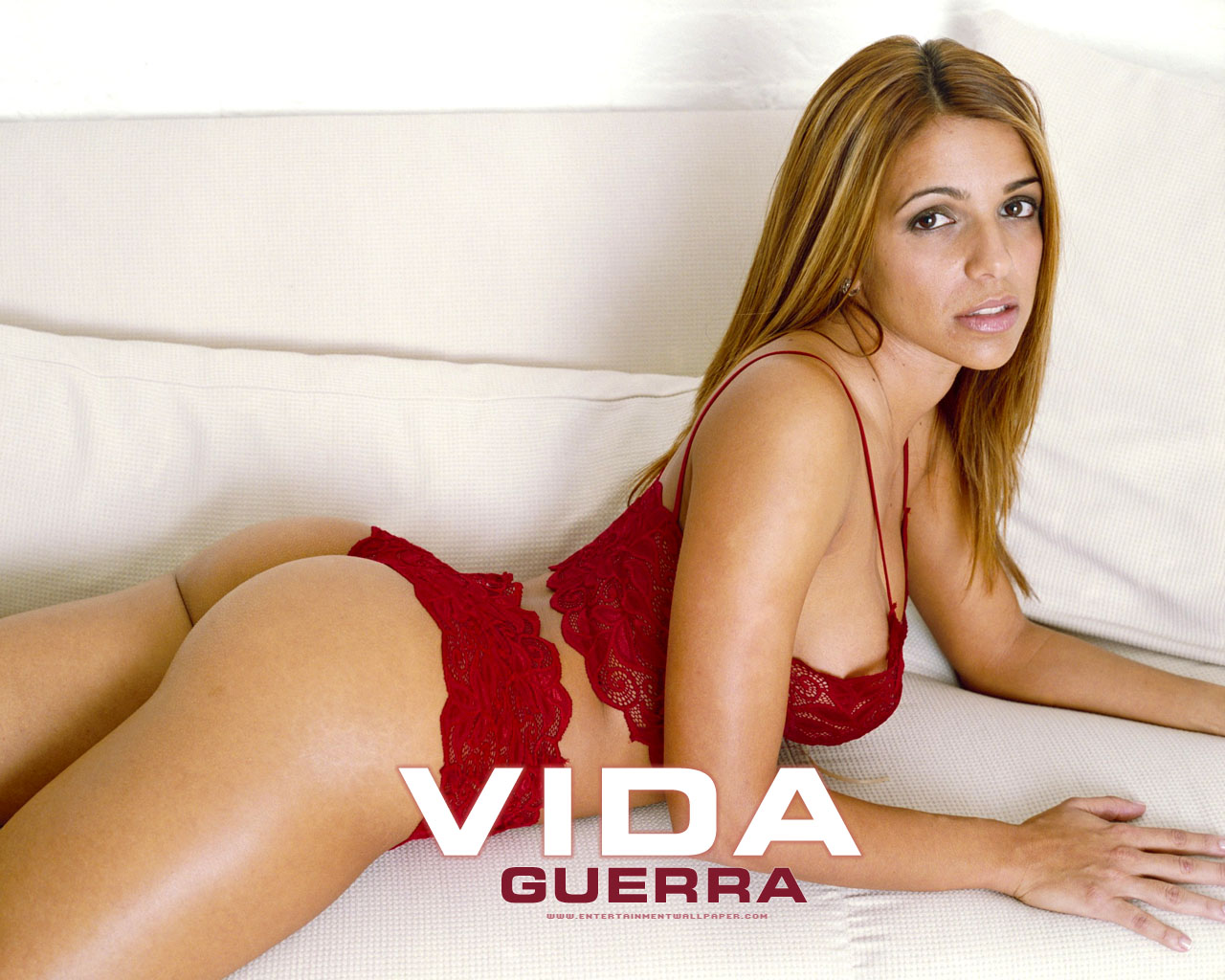 Vida Guerra hot - wallpaper | Beauty gets fucked in doggie