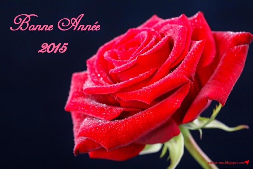 carte romantique de bonne annee 2015