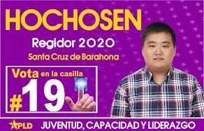 HOCHOSEN  VOTA 19