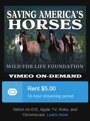 Saving American Horses Featurette