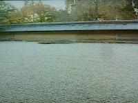 羽田さんは竜安寺好きでいった