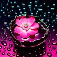 Онлайн-рисовалка цветов