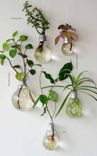 DIY Bulb Lampu ke Pasu Bunga