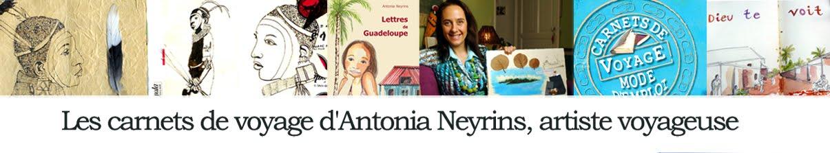 Les carnets de voyage d'Antonia Neyrins