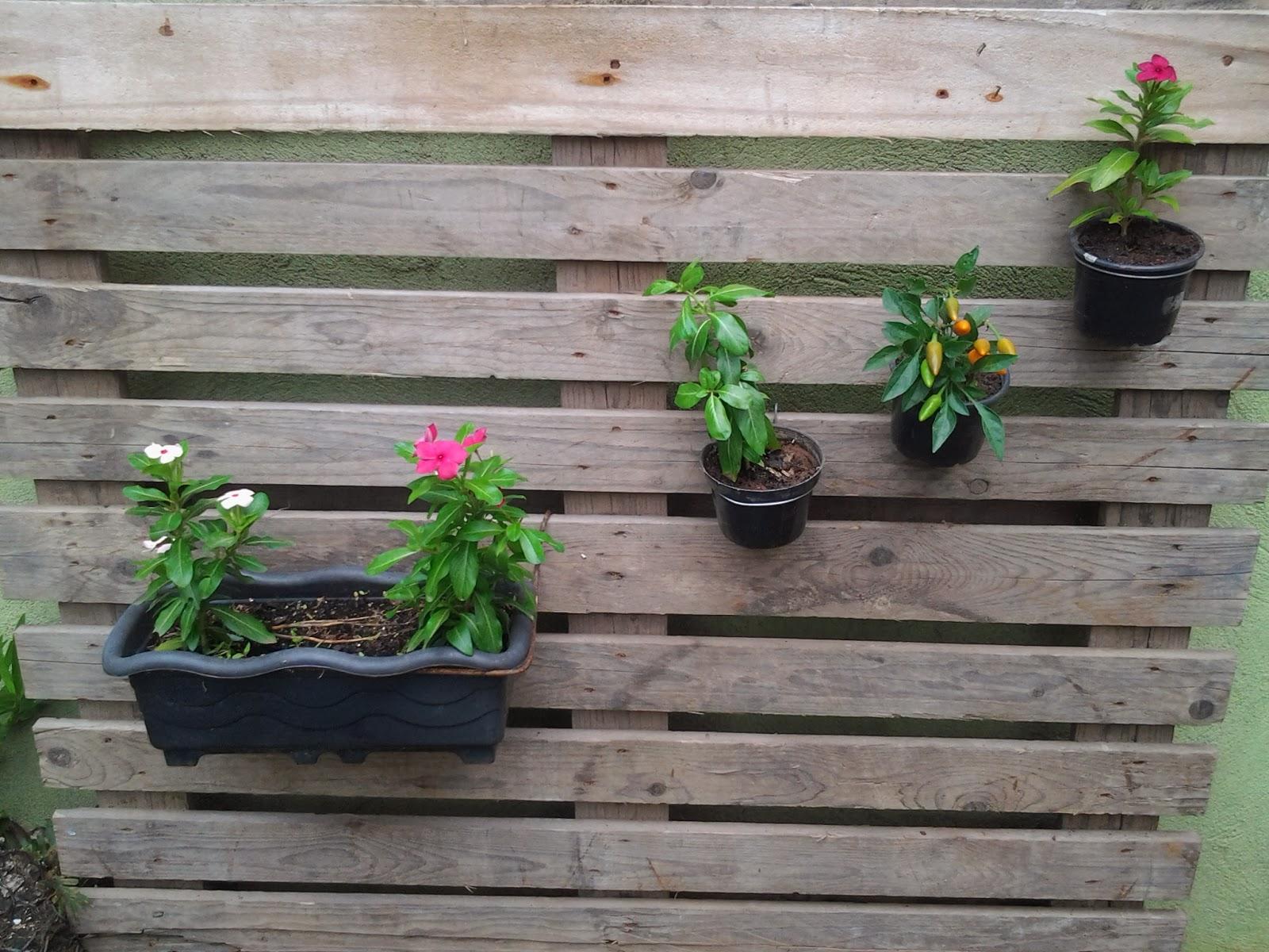 quintal jardim vertical:Depois ele fez uma armação de arame para cada tipo de vaso. Para os
