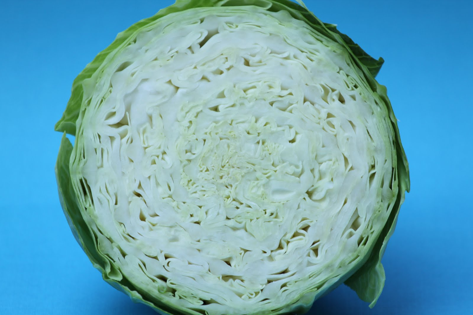 Pots and Frills: Basic White Cabbage Salad--Polish Cuisine Classic
