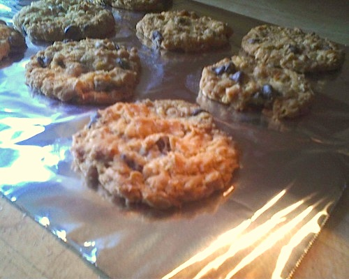 Disgruntled Baker Chocolate Chip Anzac Biscuits
