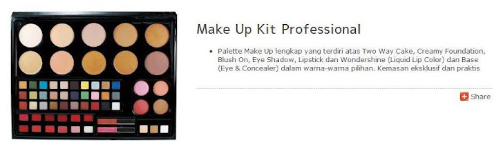 Make Up Kit Professional