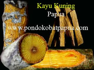 kayu kuning